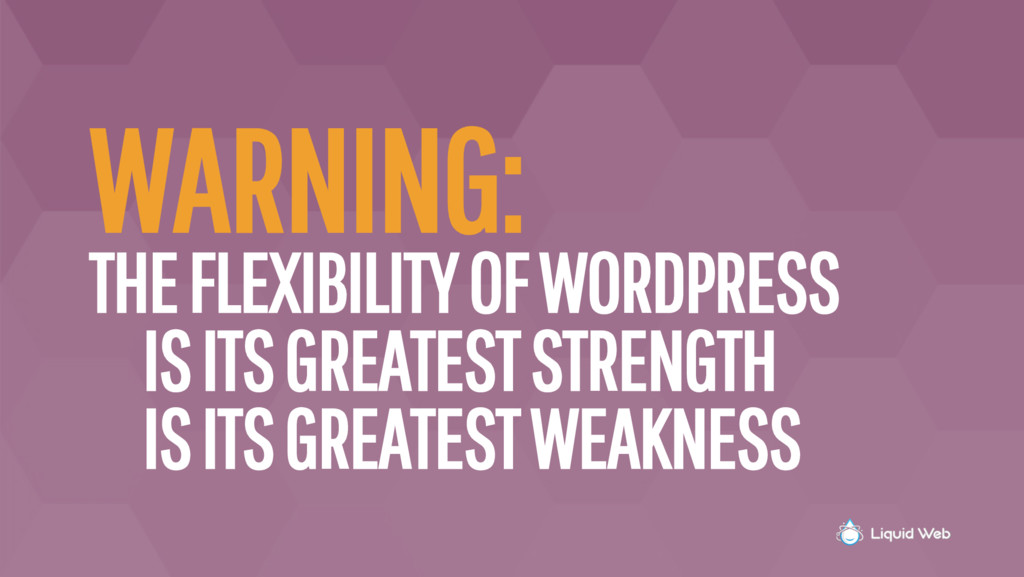 WARNING: THE FLEXIBILITY OF WORDPRESS IS ITS GR...