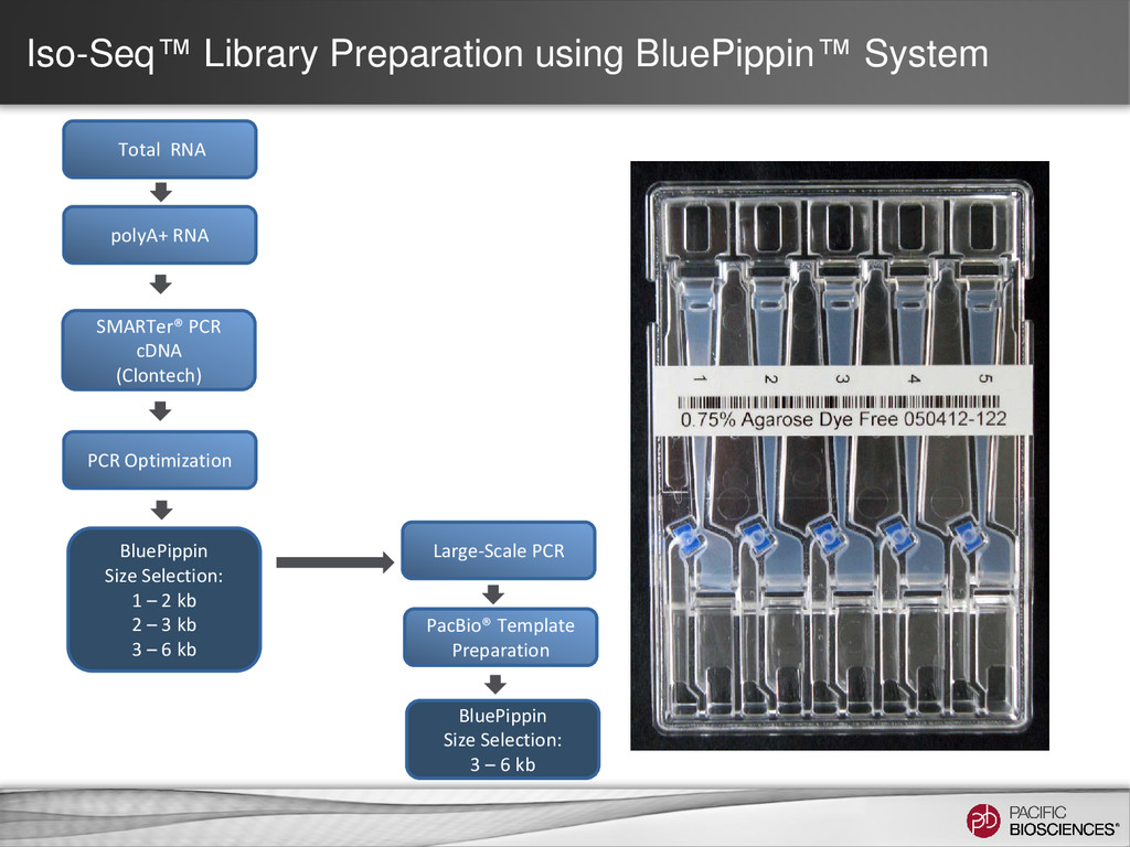 Iso-Seq™ Library Preparation using BluePippin™ ...