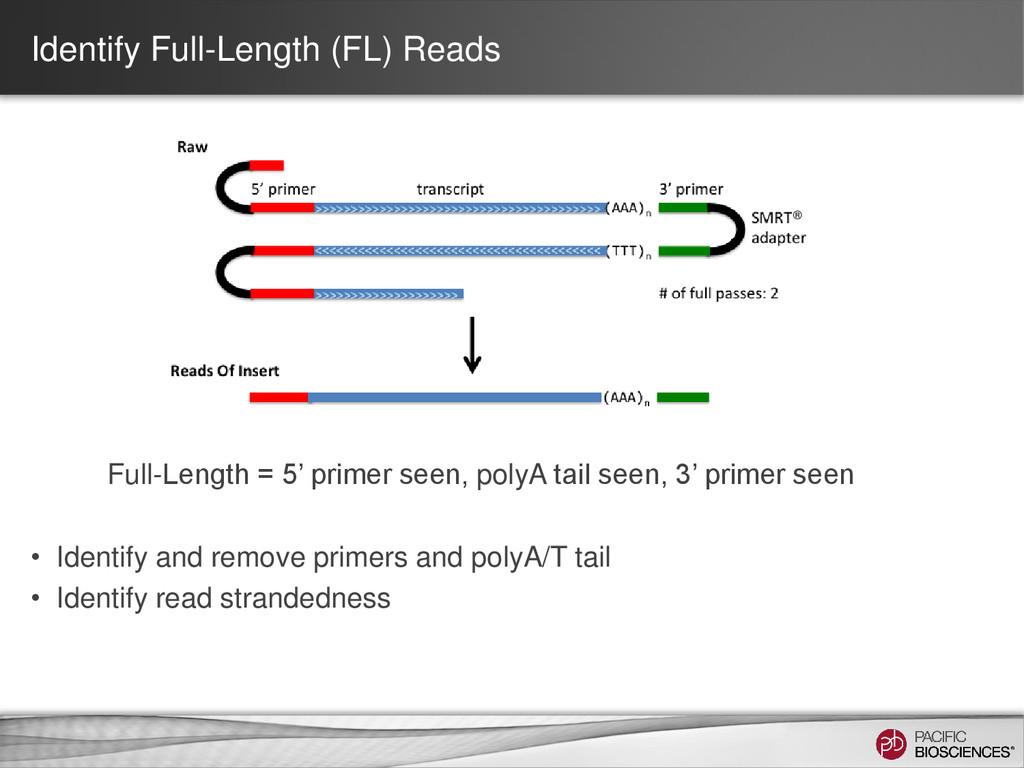 Identify Full-Length (FL) Reads Full-Length = 5...