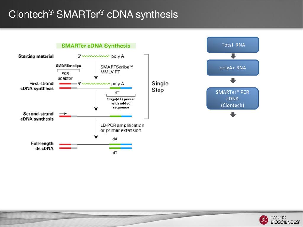 Clontech® SMARTer® cDNA synthesis polyA+ RNA SM...