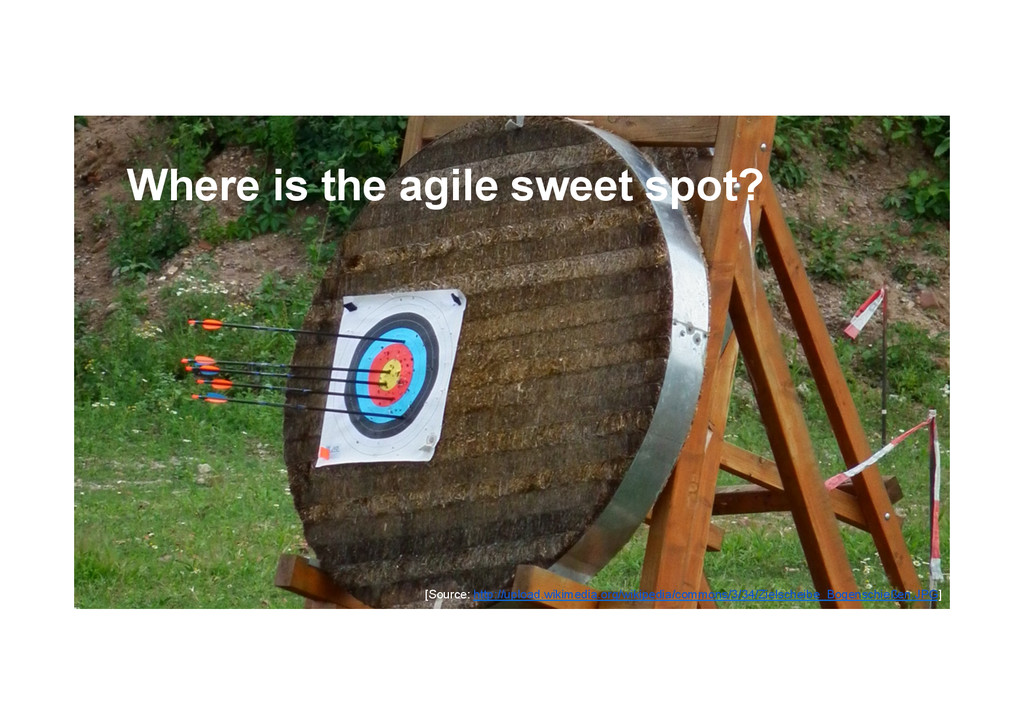 @devpg Where is the agile sweet spot? [Source: ...