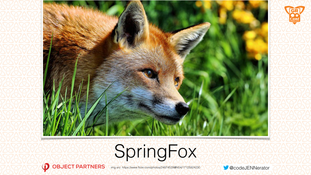 SpringFox img src: https://www.flickr.com/photos...
