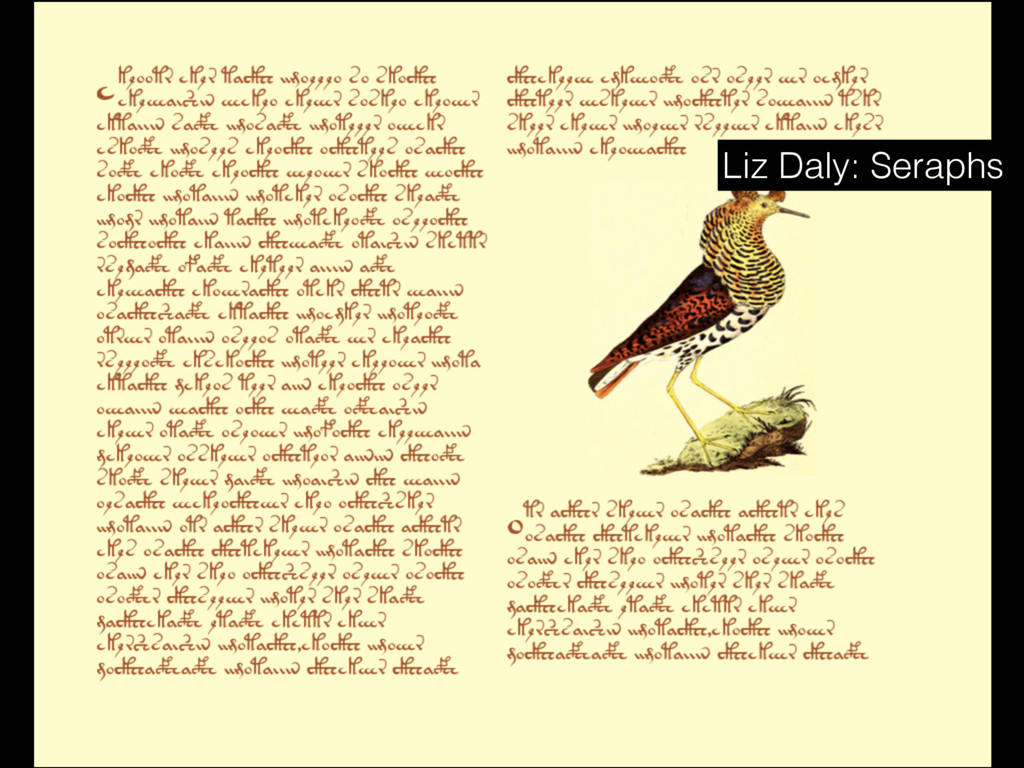 Liz Daly: Seraphs