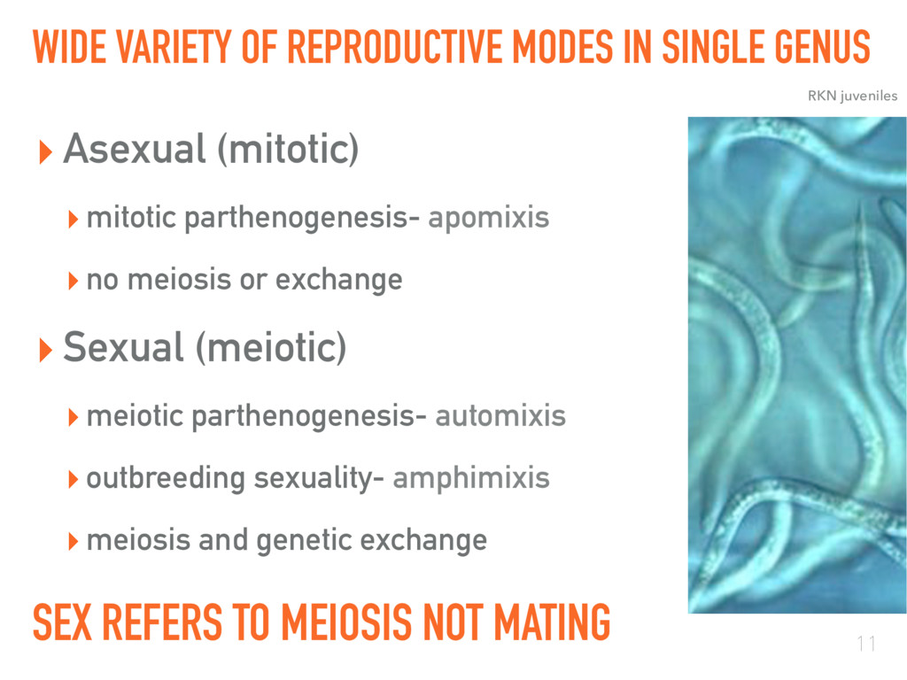 WIDE VARIETY OF REPRODUCTIVE MODES IN SINGLE GE...