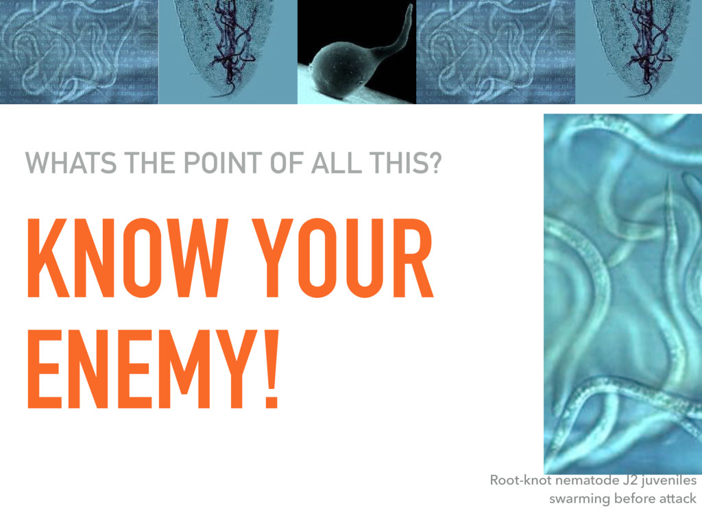 KNOW YOUR ENEMY! WHATS THE POINT OF ALL THIS? R...