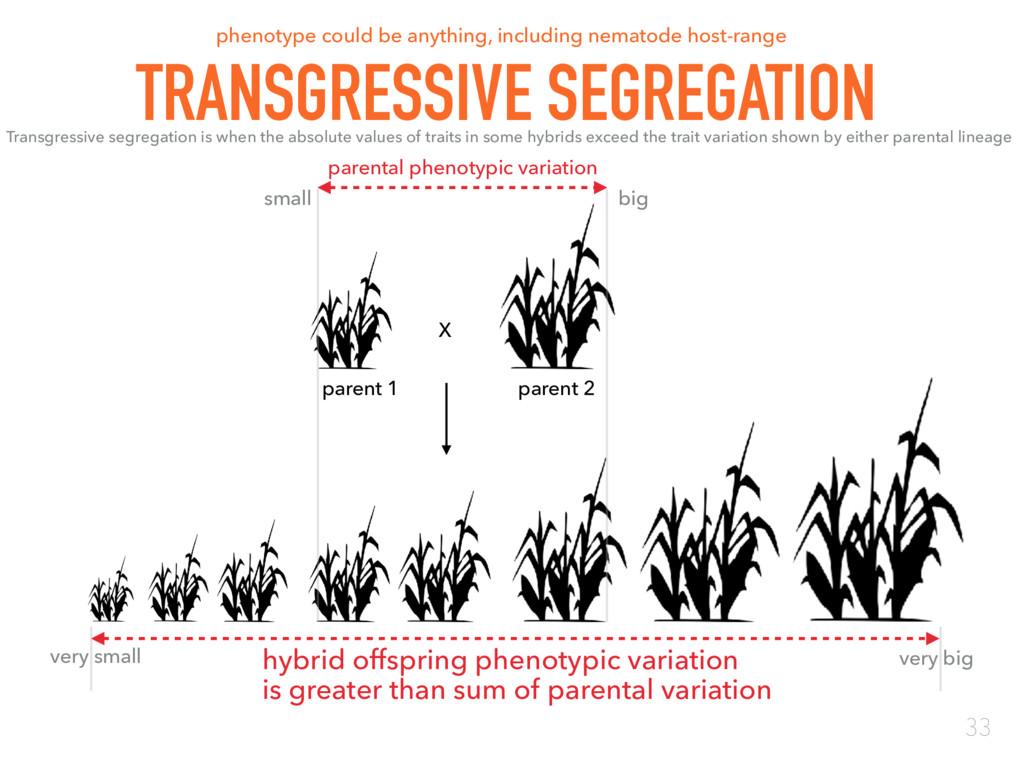 X parent 1 parent 2 hybrid offspring phenotypic...