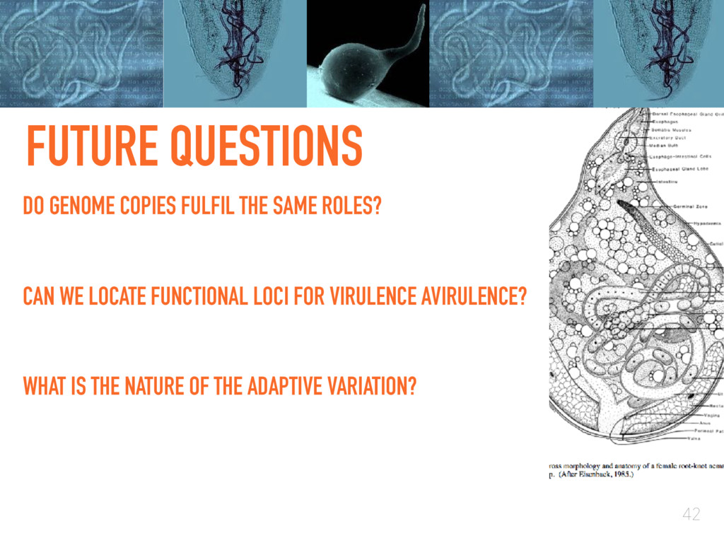 FUTURE QUESTIONS 42 CAN WE LOCATE FUNCTIONAL LO...