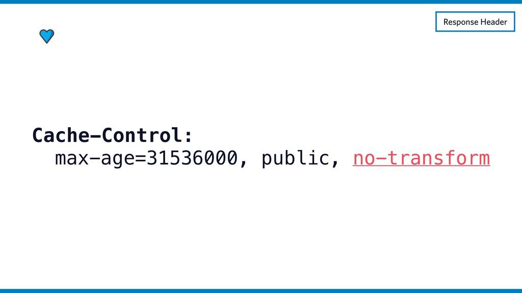 Cache-Control: max-age=31536000, public, no-tra...