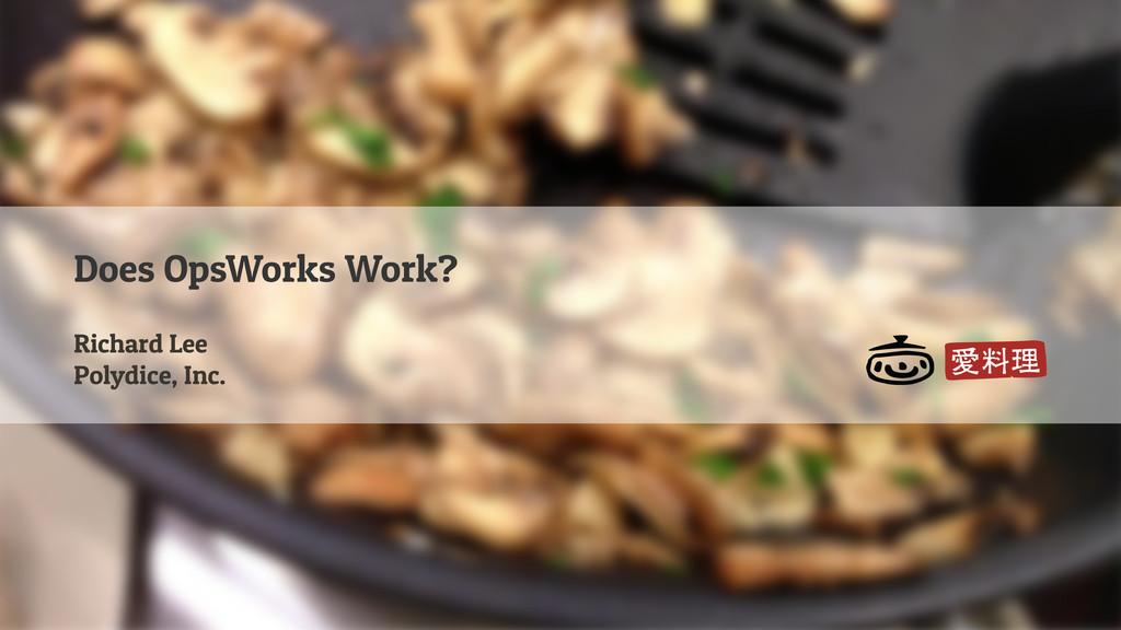 Does OpsWorks Work? Richard Lee Polydice, Inc.