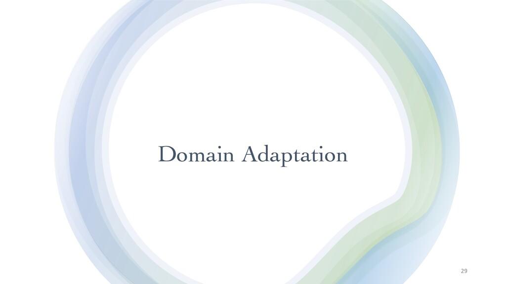 Domain Adaptation 29