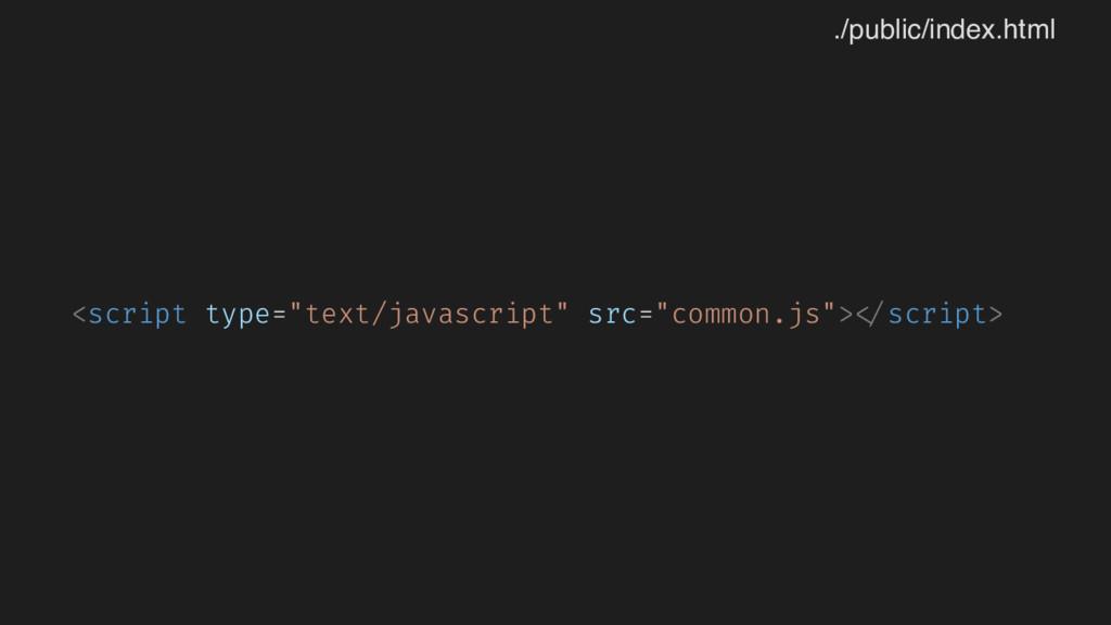 """<script type=""""text/javascript"""" src=""""common.js"""">..."""