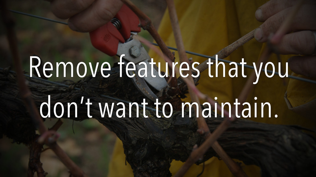 Remove features that you don't want to maintain.