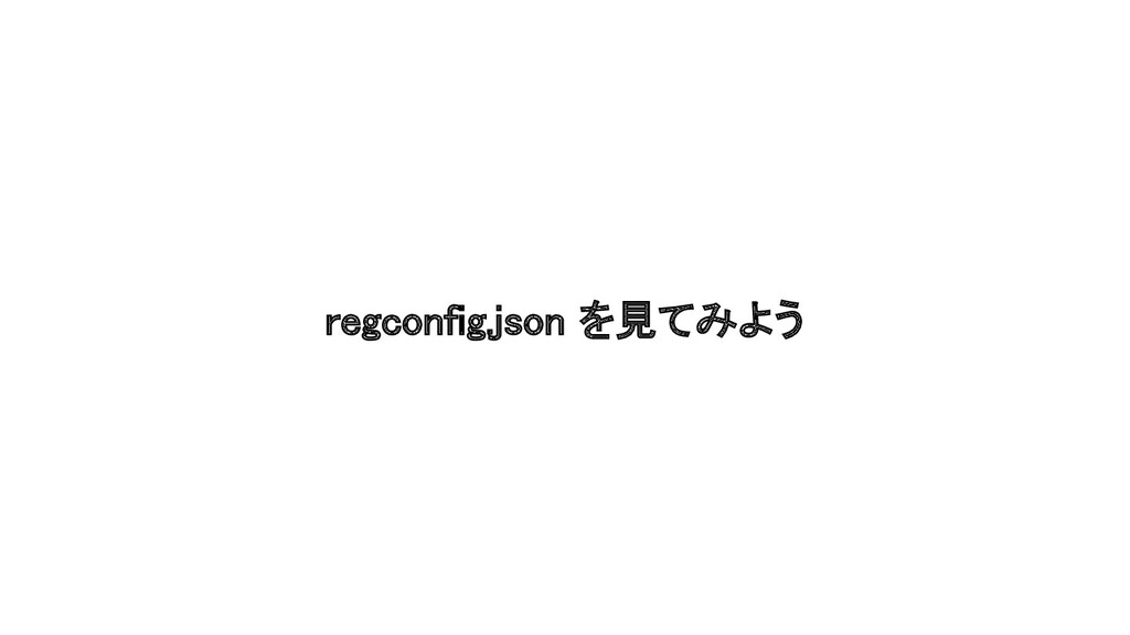 regconfig.json を見てみよう