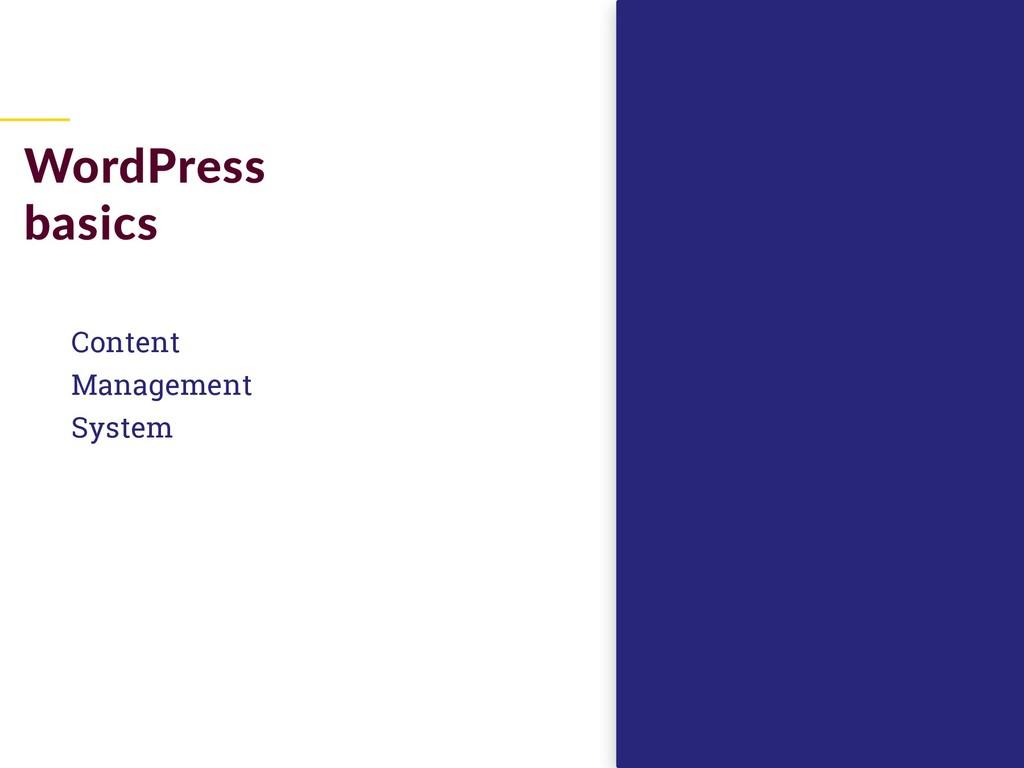 Content Management System WordPress basics
