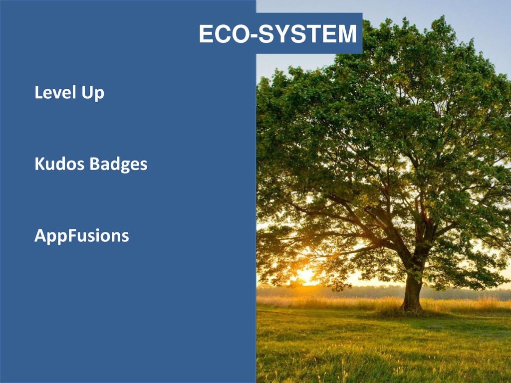 ECO-SYSTEM Level Up Kudos Badges AppFusions