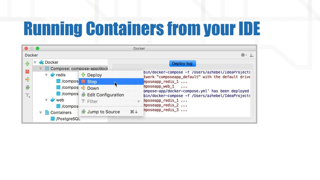 Running Containers from your IDE