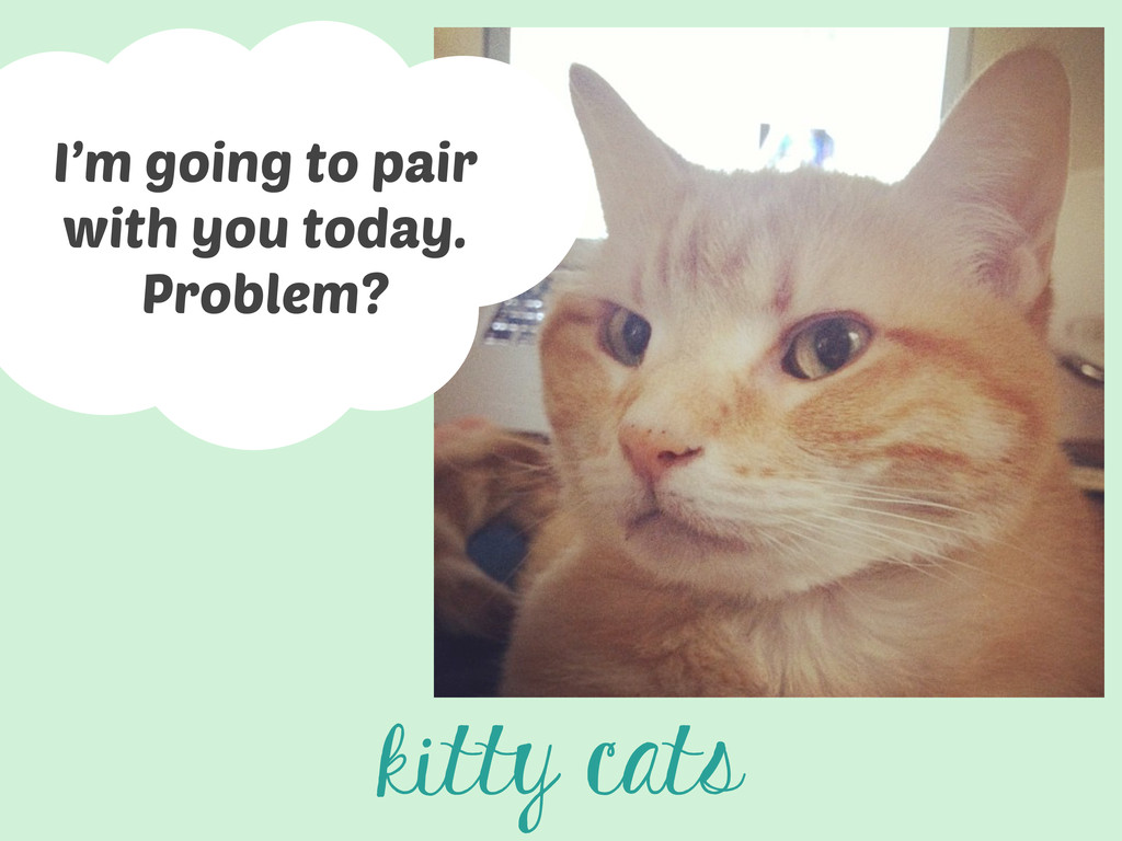 kitty cats I'm going to pair with you today. Pr...
