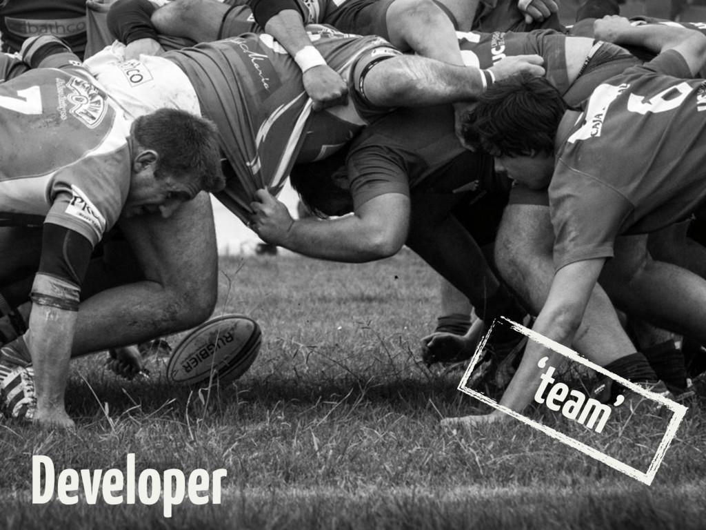 'team' Developer