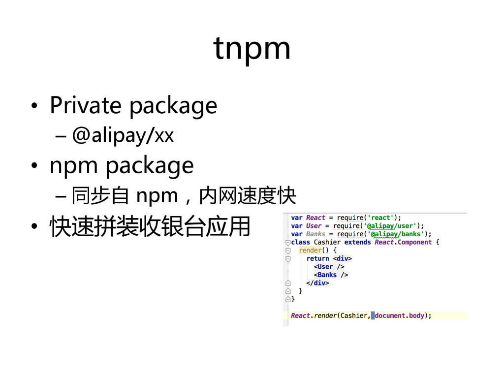 tnpm   •  Private  package   – @alipay/xx  ...