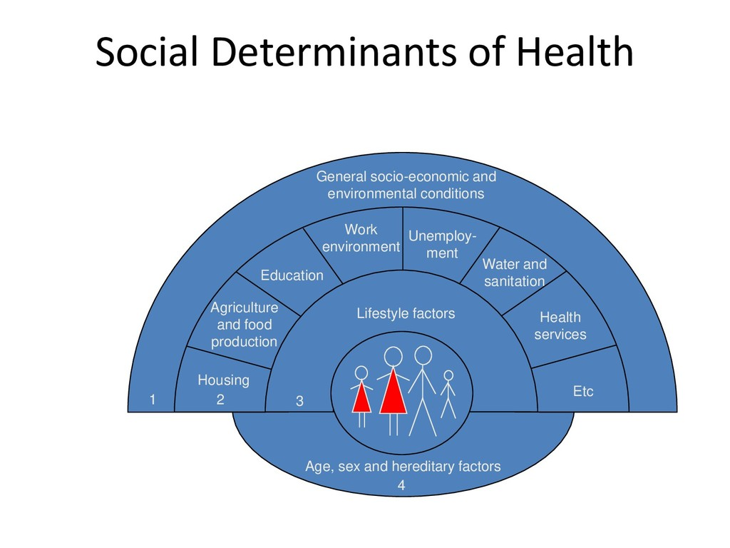 Social Determinants of Health Age, sex and here...