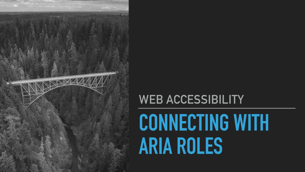 CONNECTING WITH ARIA ROLES WEB ACCESSIBILITY