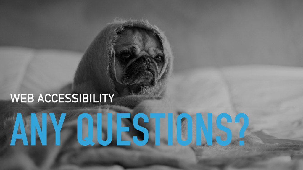 ANY QUESTIONS? WEB ACCESSIBILITY