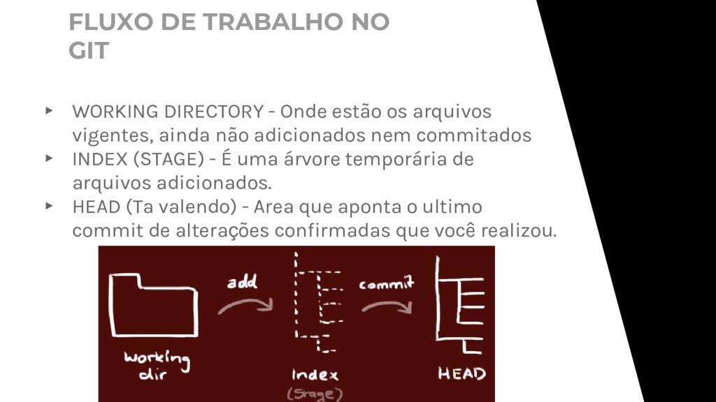 ▸ WORKING DIRECTORY - Onde estão os arquivos vi...