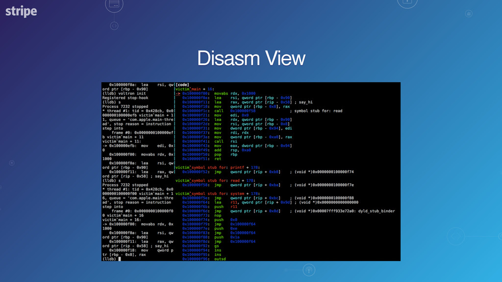 Disasm View