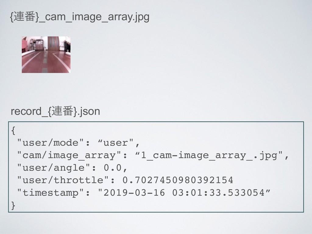 """{࿈൪}_cam_image_array.jpg { """"user/mode"""": """"user"""",..."""