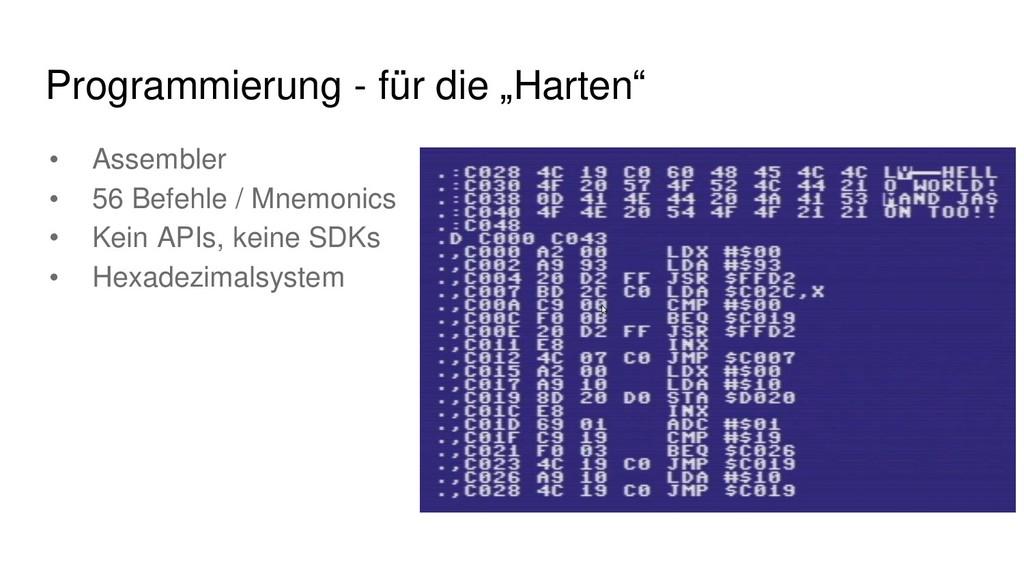 """Programmierung - für die """"Harten"""" • Assembler •..."""