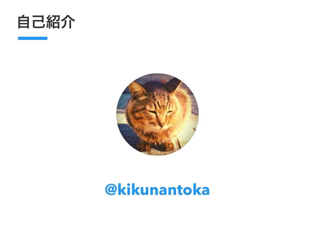 ࣗݾհ @kikunantoka