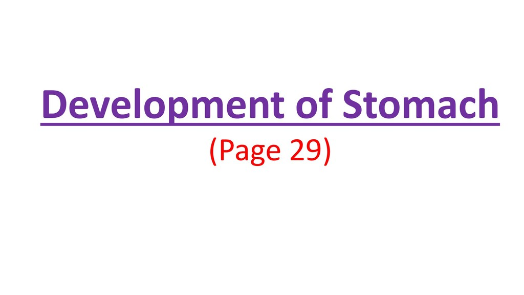 Development of Stomach (Page 29)