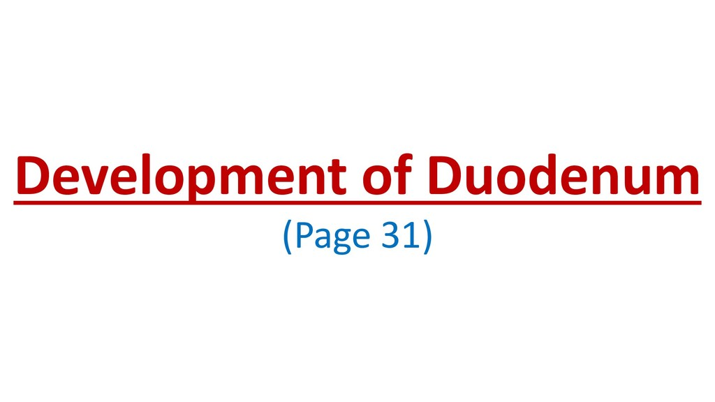 Development of Duodenum (Page 31)