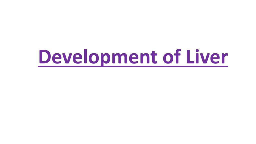 Development of Liver