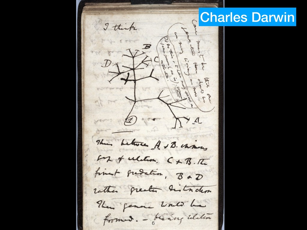 !6 Charles Darwin