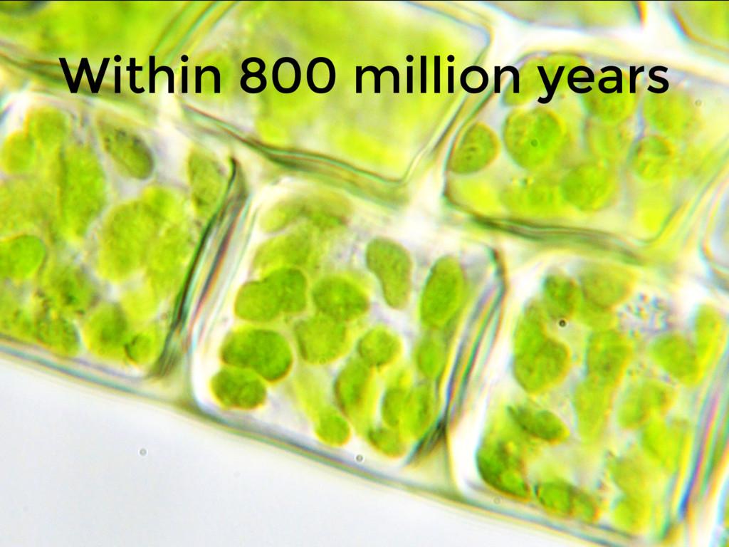 Within 800 million years