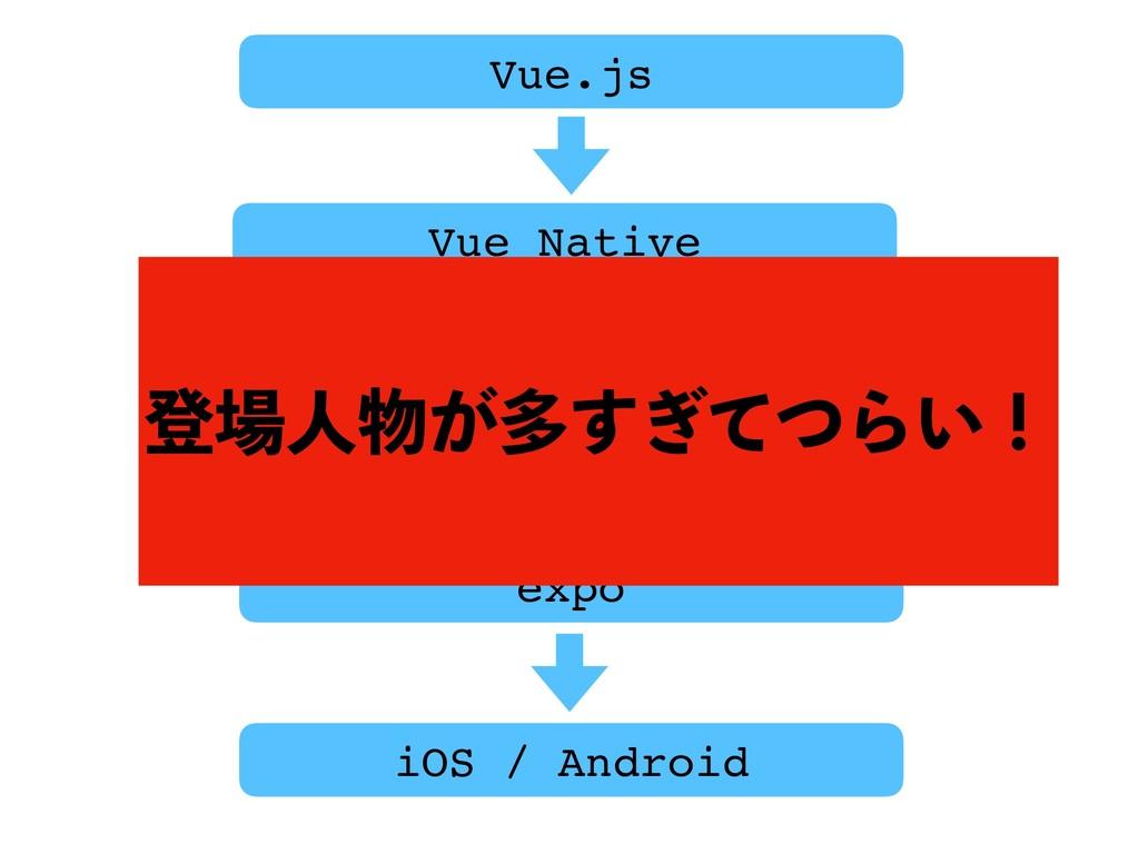 Vue.js Vue Native React Native expo iOS / Andro...