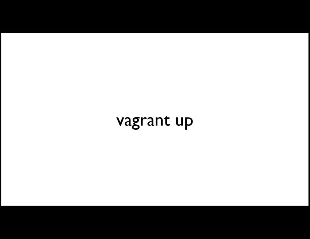 vagrant up
