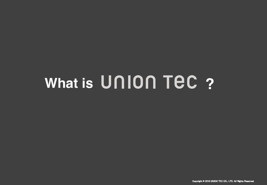 Copyright © 2018 UNION TEC CO., LTD. All Rights...