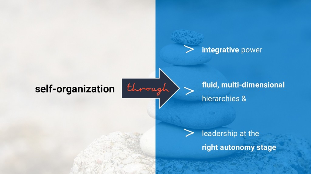 self-organization leadership at the right auton...