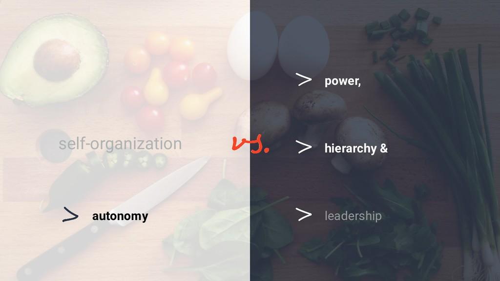 leadership self-organization hierarchy & power,...