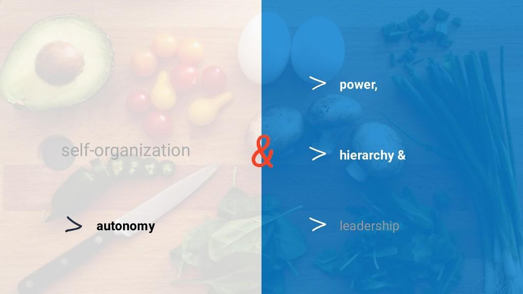 self-organization hierarchy & power, autonomy l...