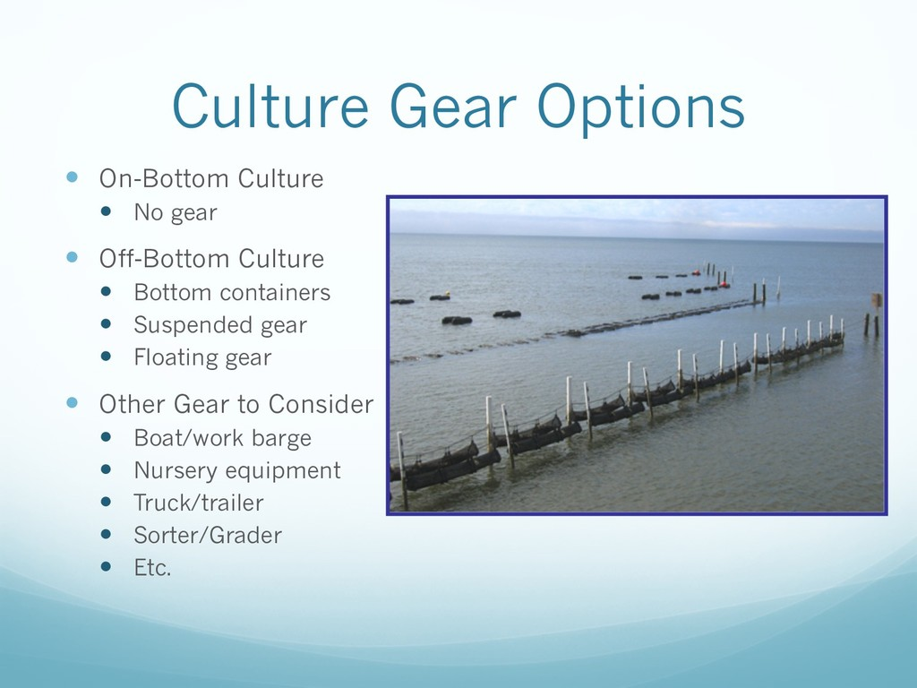 Culture Gear Options — On-Bottom Culture — No g...