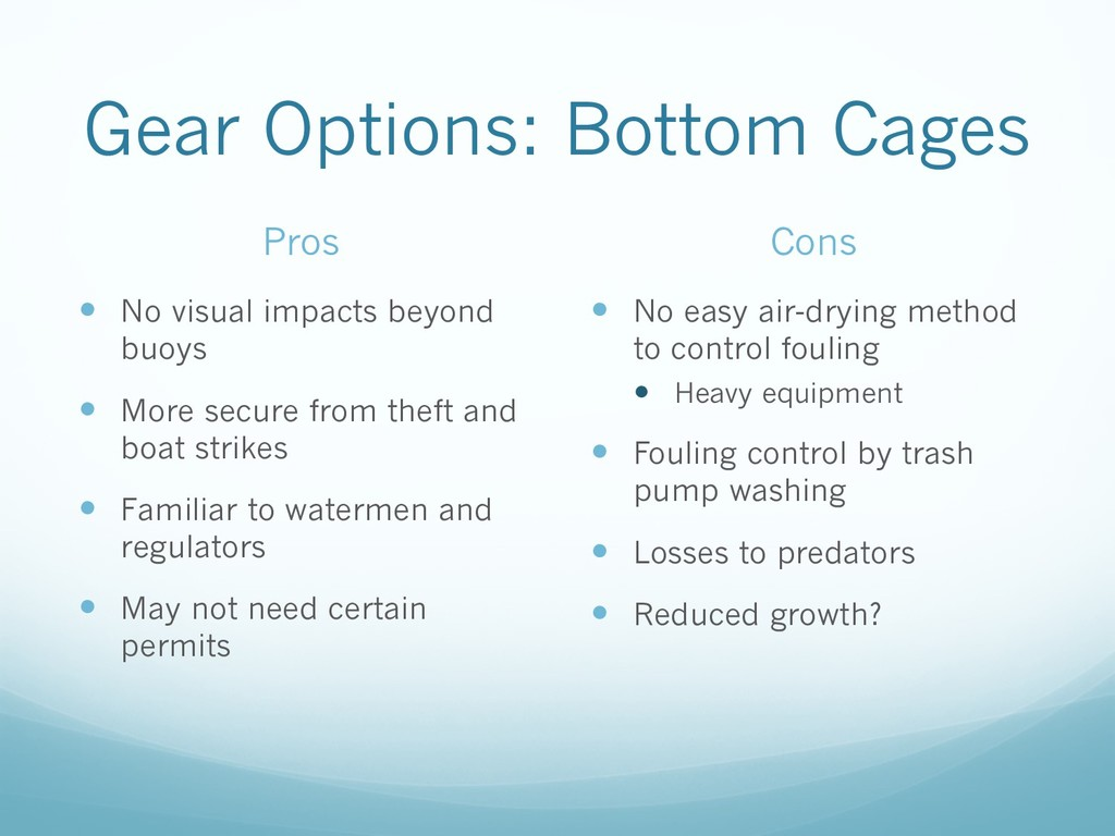 Gear Options: Bottom Cages Pros — No visual imp...