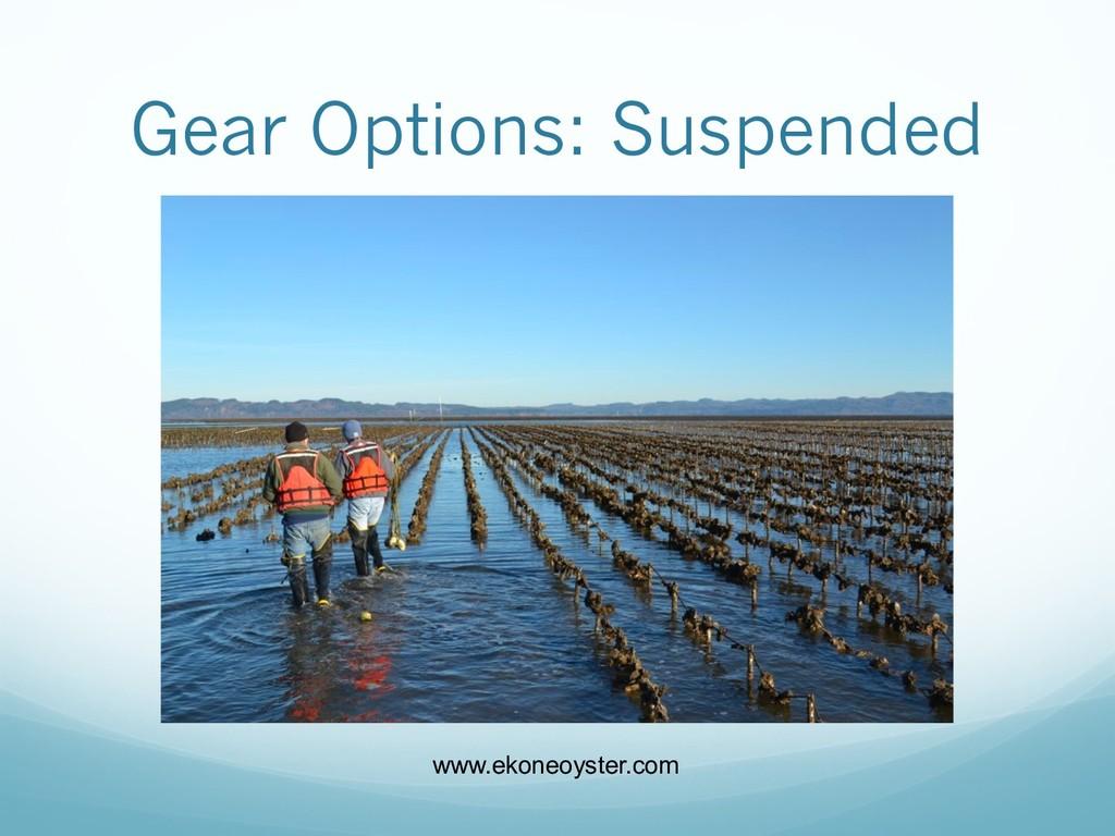 Gear Options: Suspended www.ekoneoyster.com