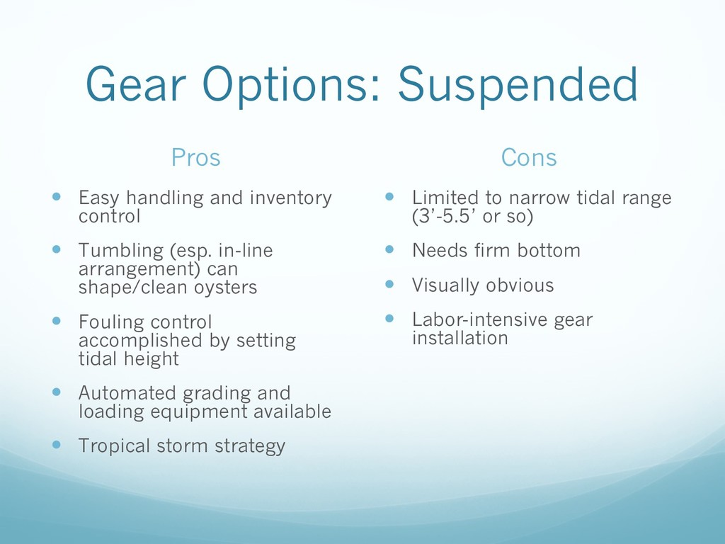 Gear Options: Suspended Pros — Easy handling an...