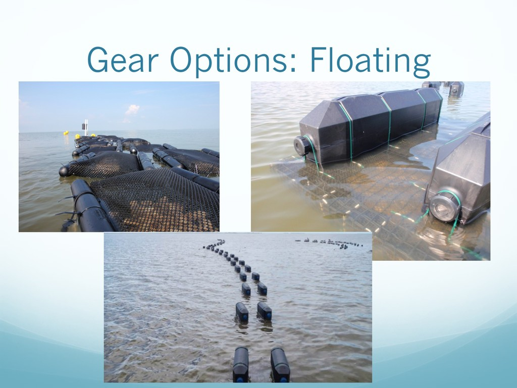 Gear Options: Floating