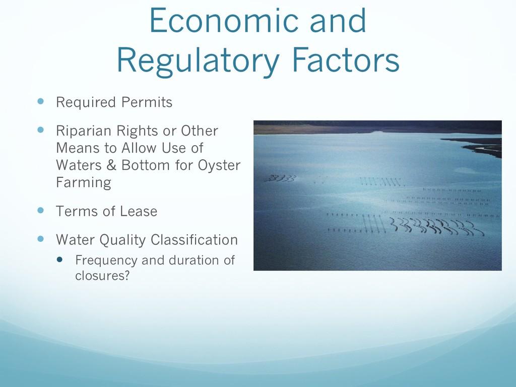 Economic and Regulatory Factors — Required Perm...