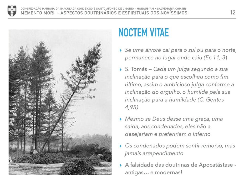 NOCTEM VITAE ▸ Se uma árvore cai para o sul ou ...