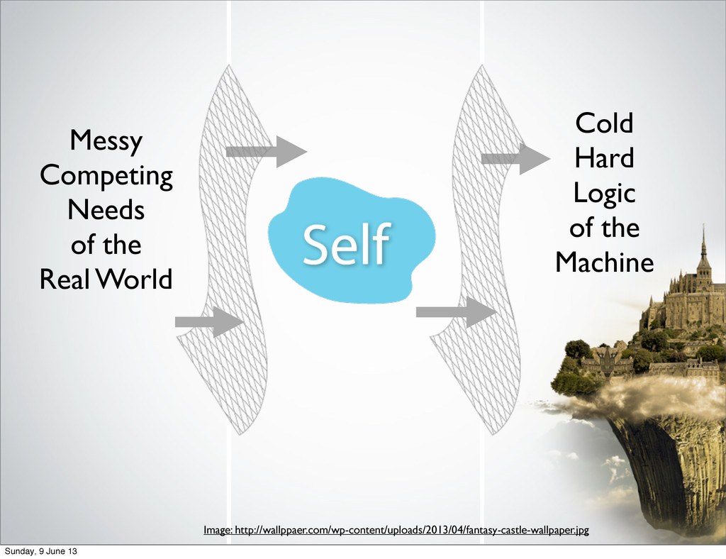 Self Messy Competing Needs of the Real World Co...